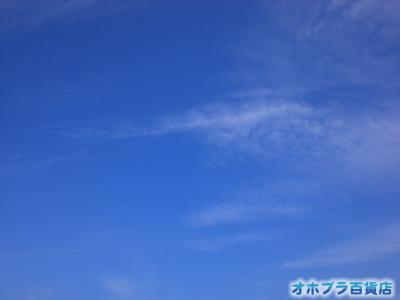 7/30:オホブラ百貨店・今朝の北見市のオホーツクブルーの空