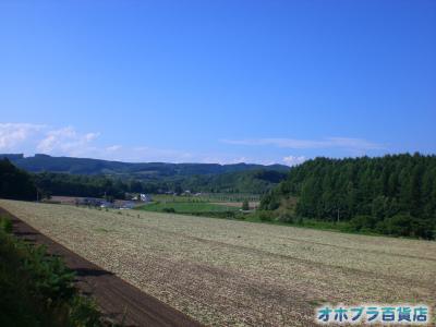 8/21:オホブラ百貨店・たまねぎ畑