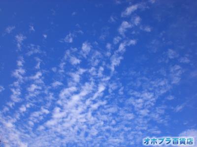 8/31:オホブラ百貨店・今朝の北見市の空と雲