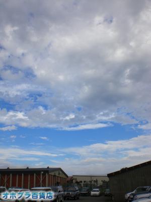 9/12:オホブラ百貨店・今朝の北見市のたまねぎ倉庫
