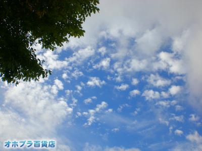 9/19:オホブラ百貨店・今朝の北見市の空