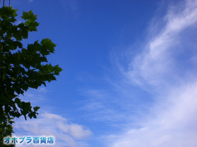 9/28:オホブラ百貨店・今朝の北見市の空