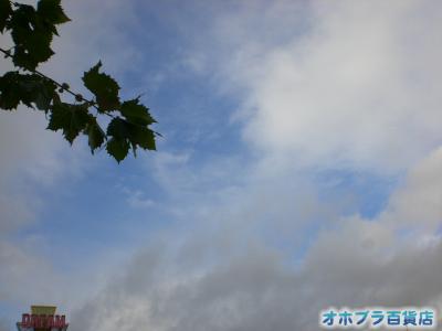 11/02:オホブラ百貨店・今朝の北見市の南大通り