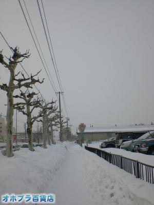 2/13:オホブラ百貨店・今朝の北見市