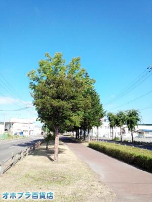 8/5:オホブラ百貨店・今朝の北見市