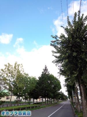 9/6:オホブラ百貨店・今朝の北見