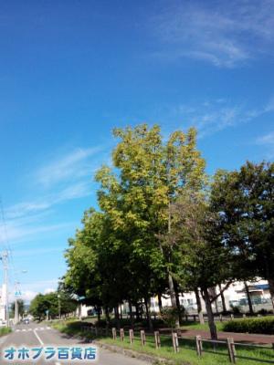 9/10:オホブラ百貨店・今朝の北見