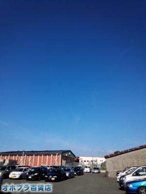 9/11:オホブラ百貨店・今朝の北見のたまねぎ倉庫
