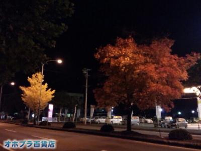 10/23:オホブラ百貨店・夜の紅葉