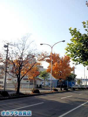 10/29:オホブラ百貨店・今朝の北見市