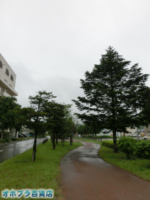 6/20:オホブラ百貨店・今朝の北見市