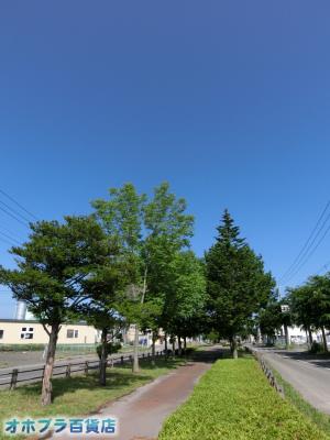 7/15:オホブラ百貨店・今朝の北見市