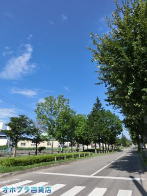 8/28:オホブラ百貨店・今朝の北見市