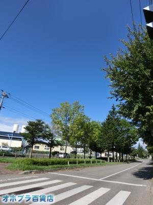 9/18:オホブラ百貨店・今朝の北見市