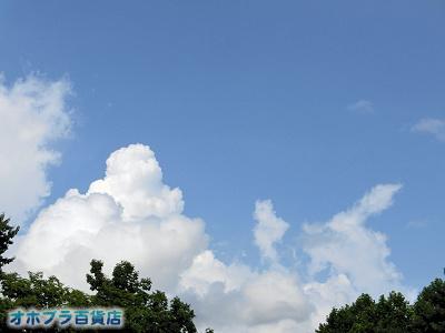 8/13:オホブラ百貨店・今朝の北見市