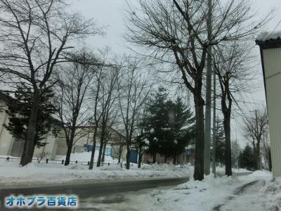 12/03:オホブラ貨店・今朝の北見市