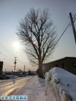 02/20:オホブラ百貨店・今朝の北見市