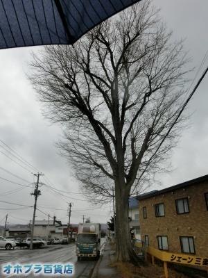 04/12:オホブラ百貨店・今朝の北見市