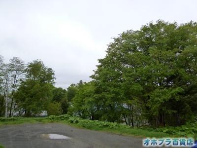 06/05:オホブラ百貨店・今朝の北見市