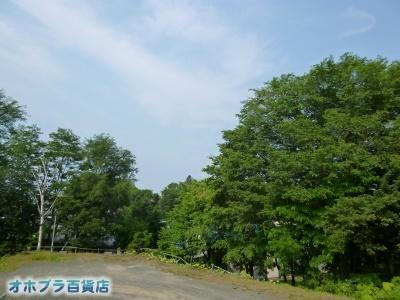 07/07:オホブラ百貨店・自転車通勤