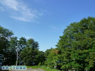 08/21:オホブラ百貨店・自転車通勤