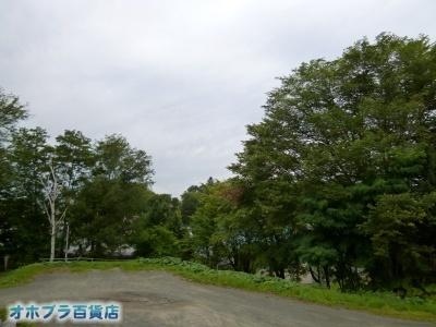 08/31:オホブラ百貨店・自転車通勤