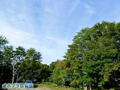 09/07:オホブラ百貨店・自転車通勤