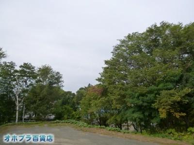 09/11:オホブラ百貨店・自転車通勤