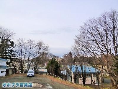 11/10:オホブラ百貨店・今日の様子