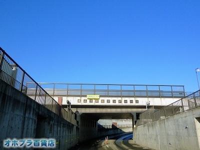 11/14:オホブラ百貨店・今日の様子