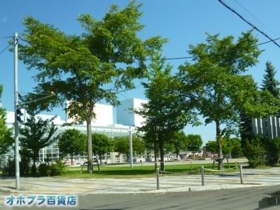 08-20:オホブラ百貨店・今朝の北見市