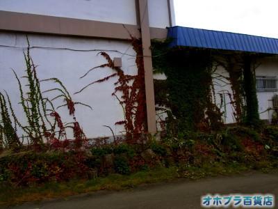 0920:オホブラ百貨店・今朝の北見市