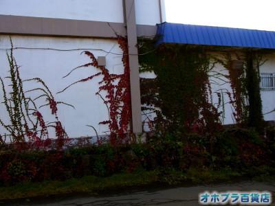 0924:オホブラ百貨店・今朝の北見市