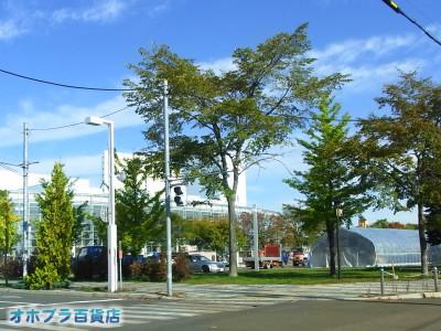 1007:オホブラ百貨店・今朝の北見市