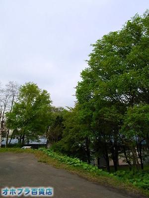 05-29:オホブラ百貨店・今朝の北見市