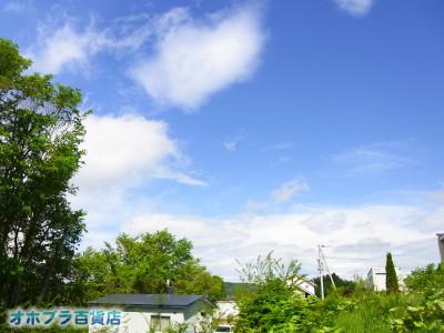 06-02:オホブラ百貨店・今朝の北見市