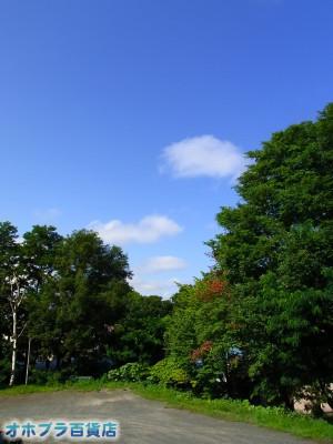08-03:オホブラ百貨店・今朝の北見市