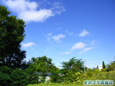 09-03:オホブラ百貨店・今朝の北見市