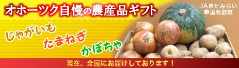 オホーツク自慢の農産品ギフト:じゃがいも・たまねぎ・かぼちゃ