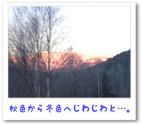 a061106.jpg