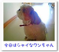 a070823_2.jpg
