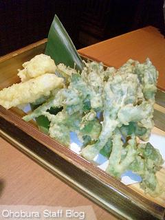 遊食厨房 いっこん家:ウドの天ぷら