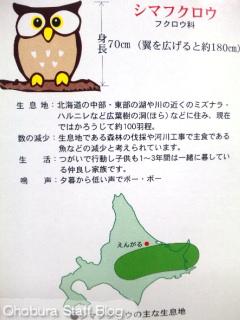 ガトー・ロバ「森の菓夢夷(かむい)」/遠軽町