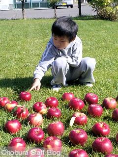 りんごと少年