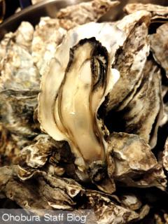 網走・藻琴湖の特産品 幻の「至宝牡蠣」